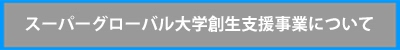 http://www.u-tokyo.ac.jp/res02/sgu.html